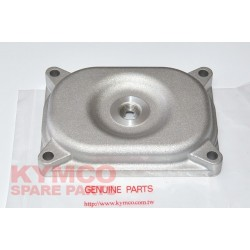 CAP OIL STRAINER - 15436-PWB1-900