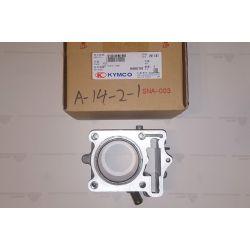 Cylinder 12100-KEBE-900