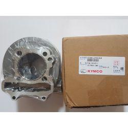Cylinder 12100-LFC4-900